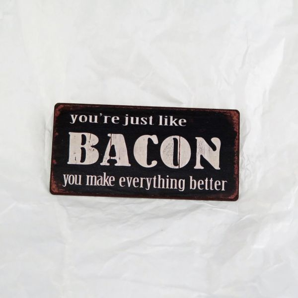 "Magnet ""You're just like bacon: You make everything better."""